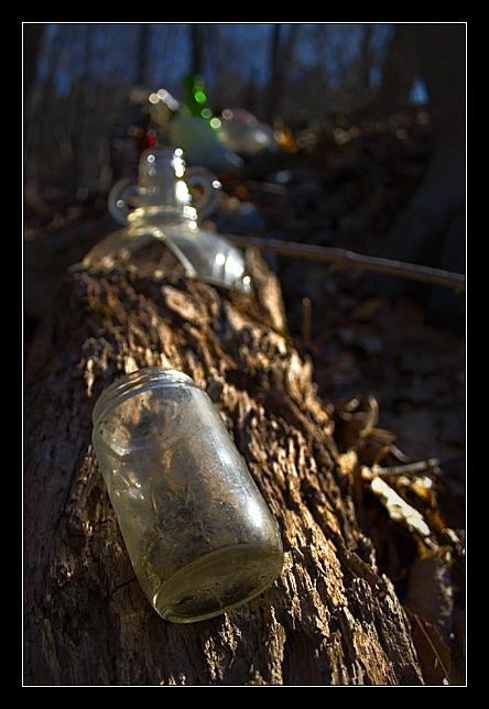 Glass on a Log
