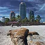 Miami Rocks