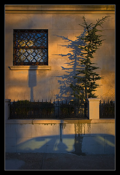 Riverside Shadows