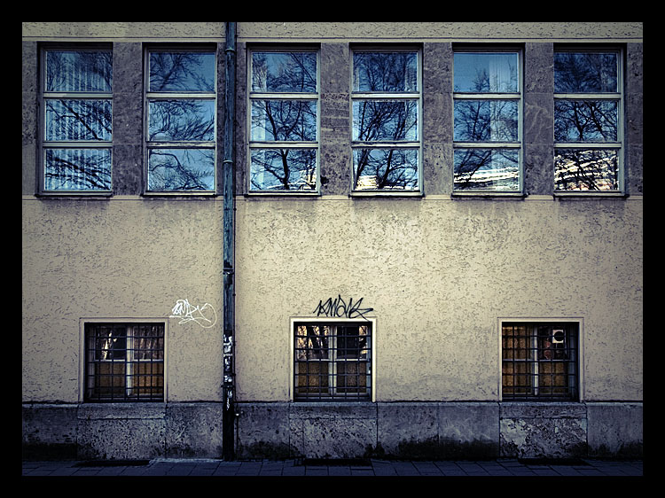 Grafitti and Windows