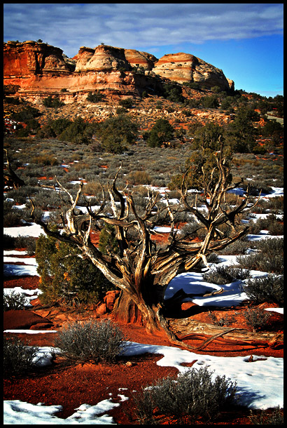 Canyonlands Revisited 2
