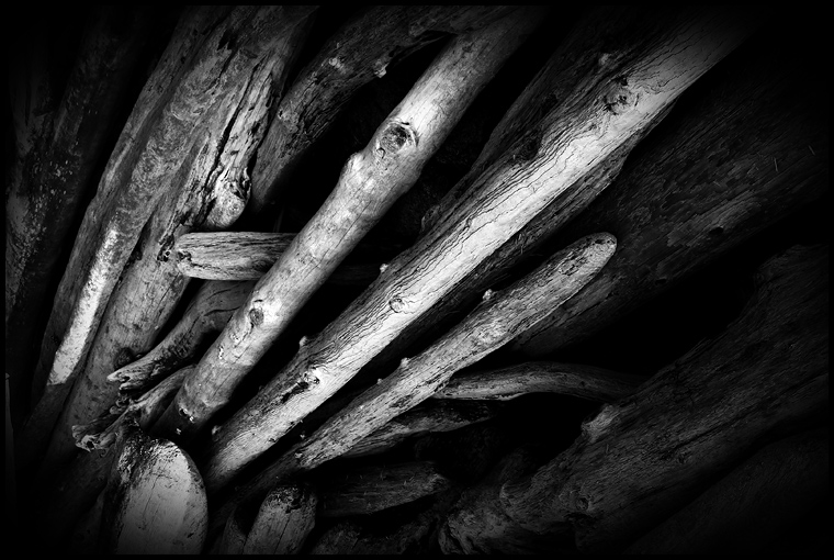 Logs of Driftwood